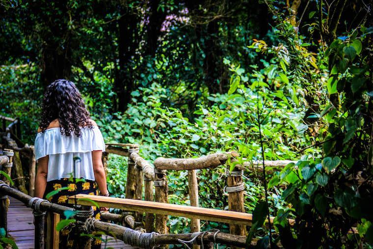 doi Inthanon parque tailandia