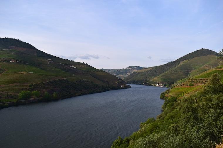 vinícolas em Portugal vale do douro