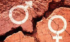 7 culturas com identidades de gênero não-binárias