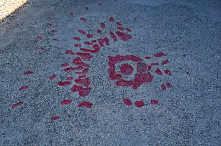 guerra da bosnia rosas de sarajevo