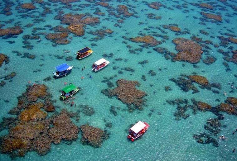 Parrachos de Maracajaú mergulho