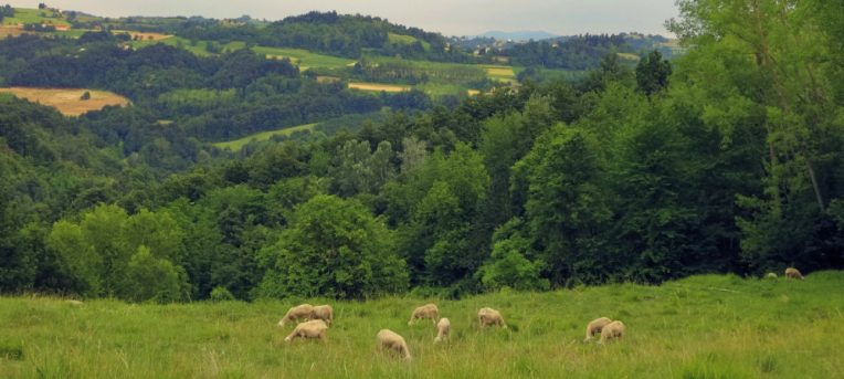 O que a Itália me ensinou sobre uma vida sustentável