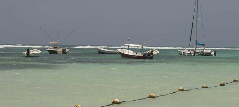 Akumal, a praia para nadar com tartarugas no México