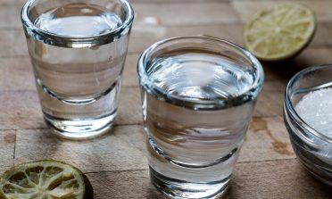 A arte de fabricar mezcal, bebida mexicana parente da tequila