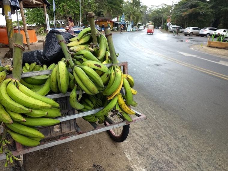 Banana na Costa Rica