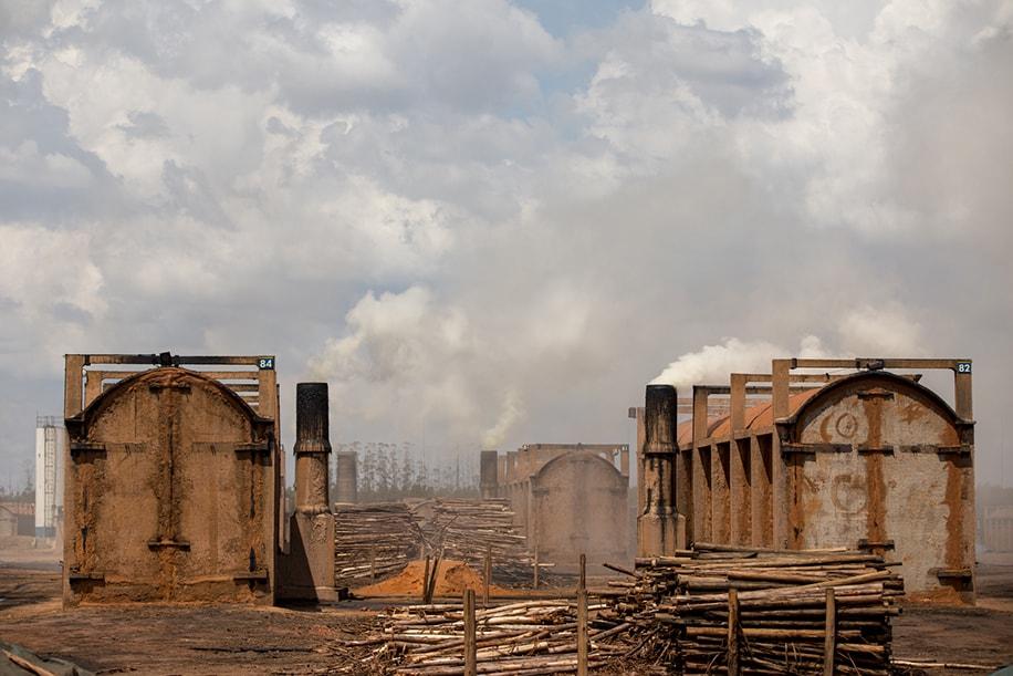 Desmatamento cerrado brasileiro