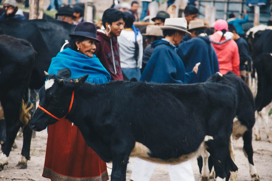 Mercado de Animais de Otavalo