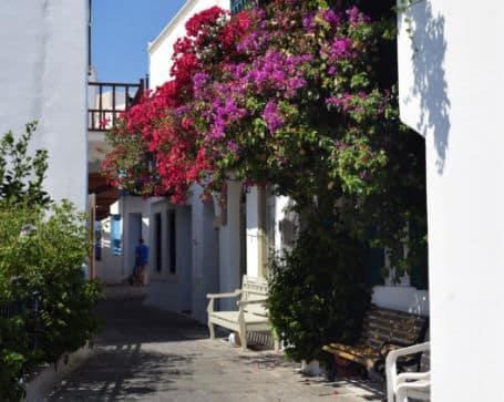 Ilha de Nisyros Grecia vila de mandraki com flores