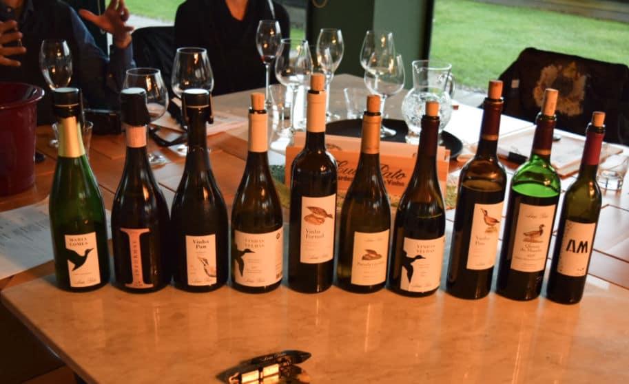 vinhos de portugal como trazer para brasil