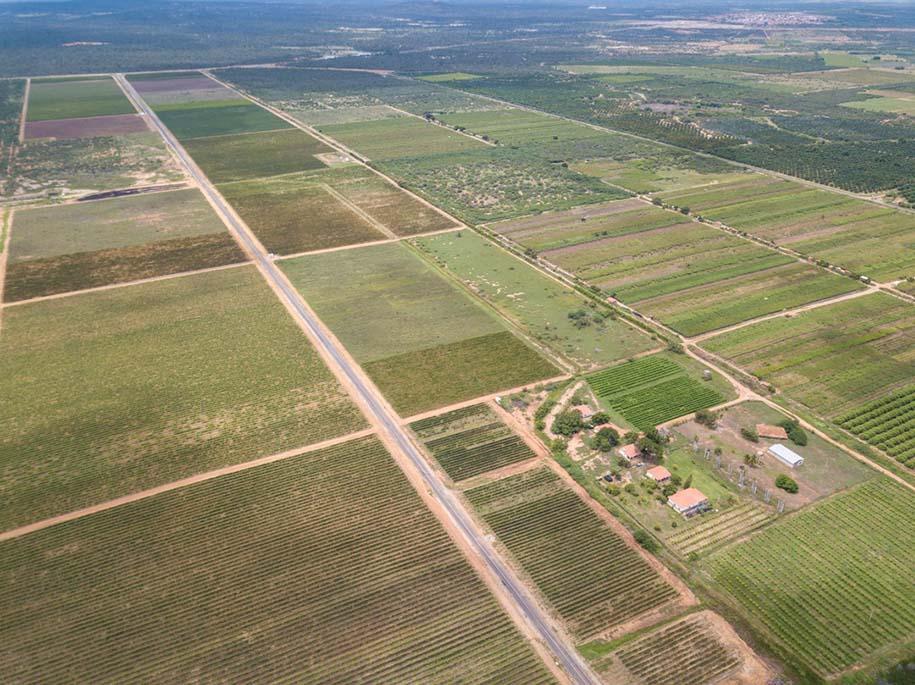 vinícola no vale do são francisco