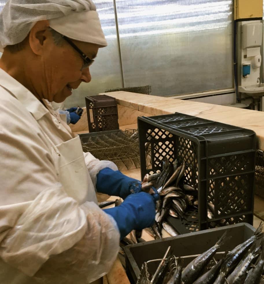 mulher trabalha na preparacao da sardinha