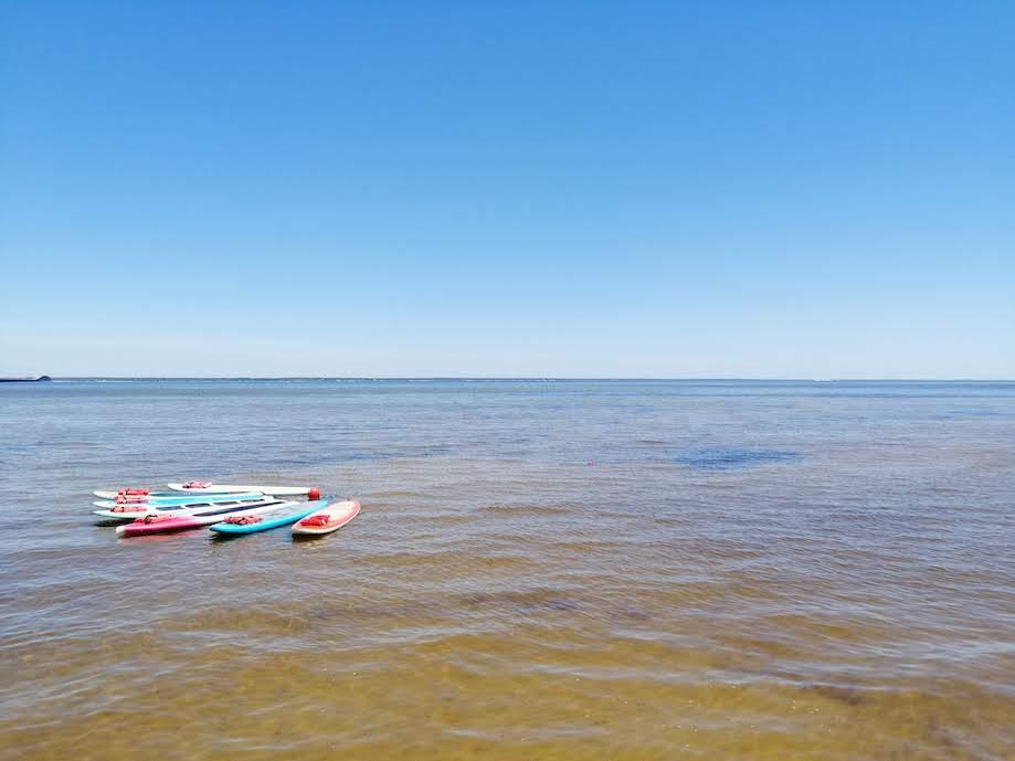 pranchas de SUP em praia de Destin, Florida