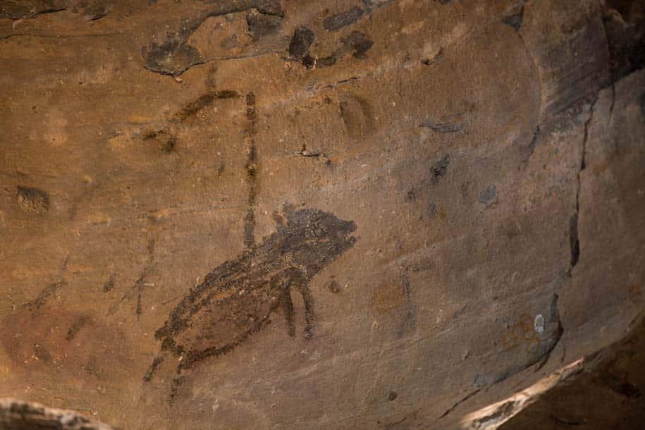 pintura rupestre preta, de um animal