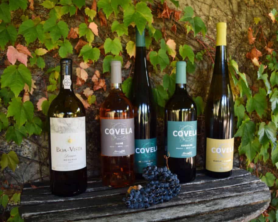 garrafas de vinho portugal