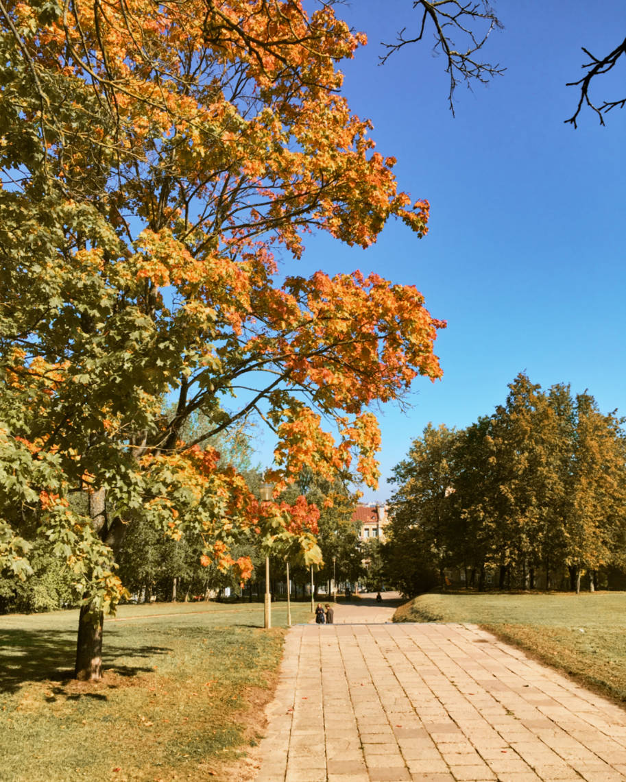 parque em vilnius lituania