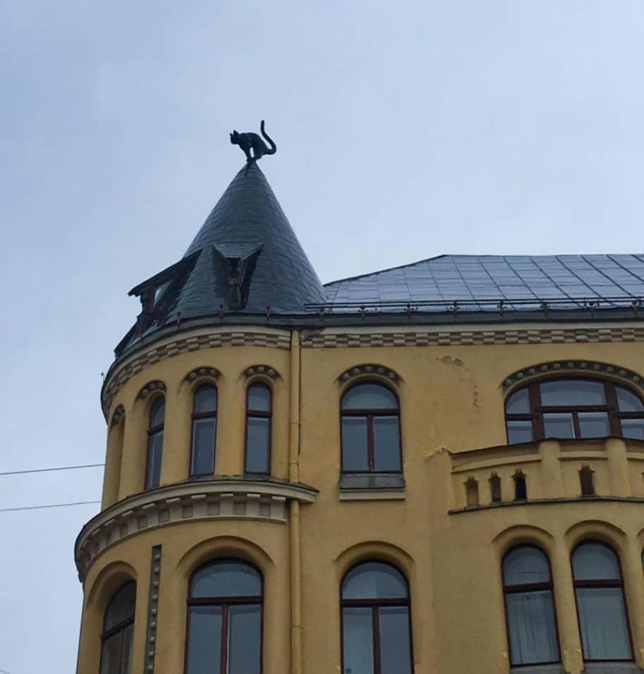 cat house em riga letonia o que fazer