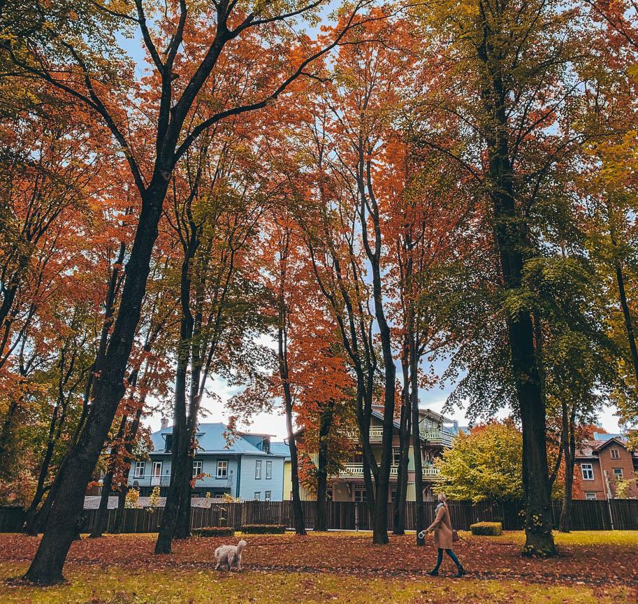 parque kalamaja tallinn estonia