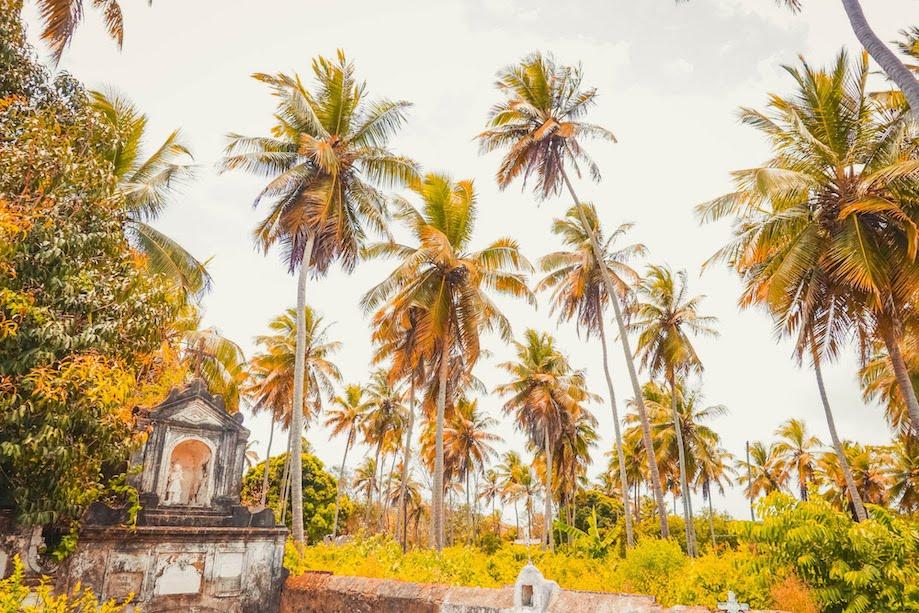 Cemitério da Ilha de Itamaracá