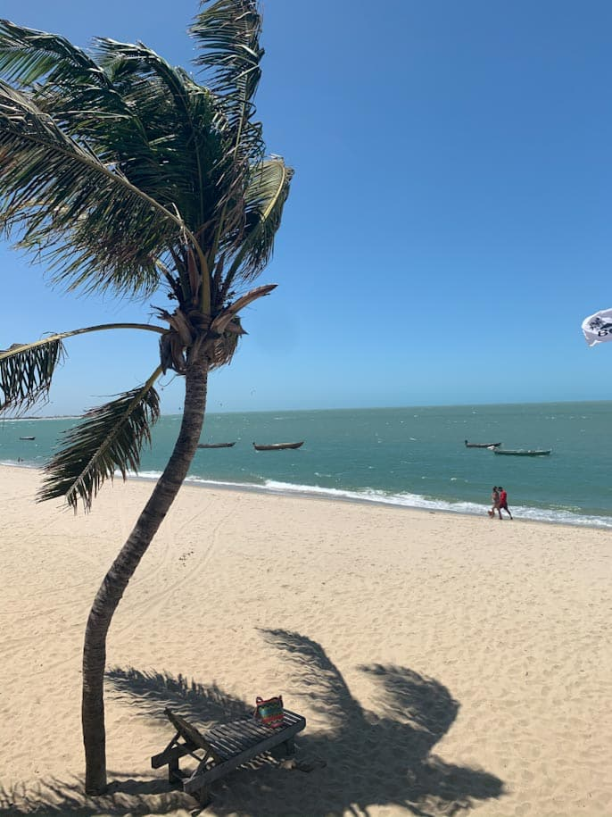 rota das emoções praia barra grande piaui coqueiro