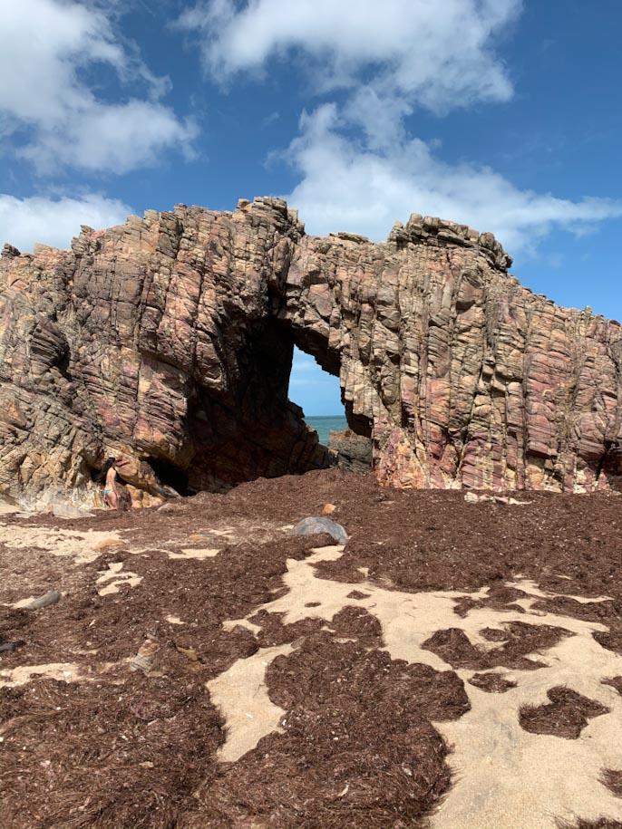 pedra furada jericoacora praia algas