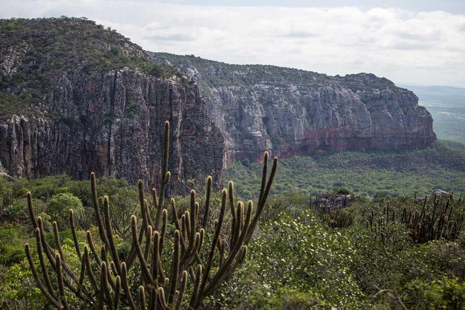 paisagem no vale do catimbau