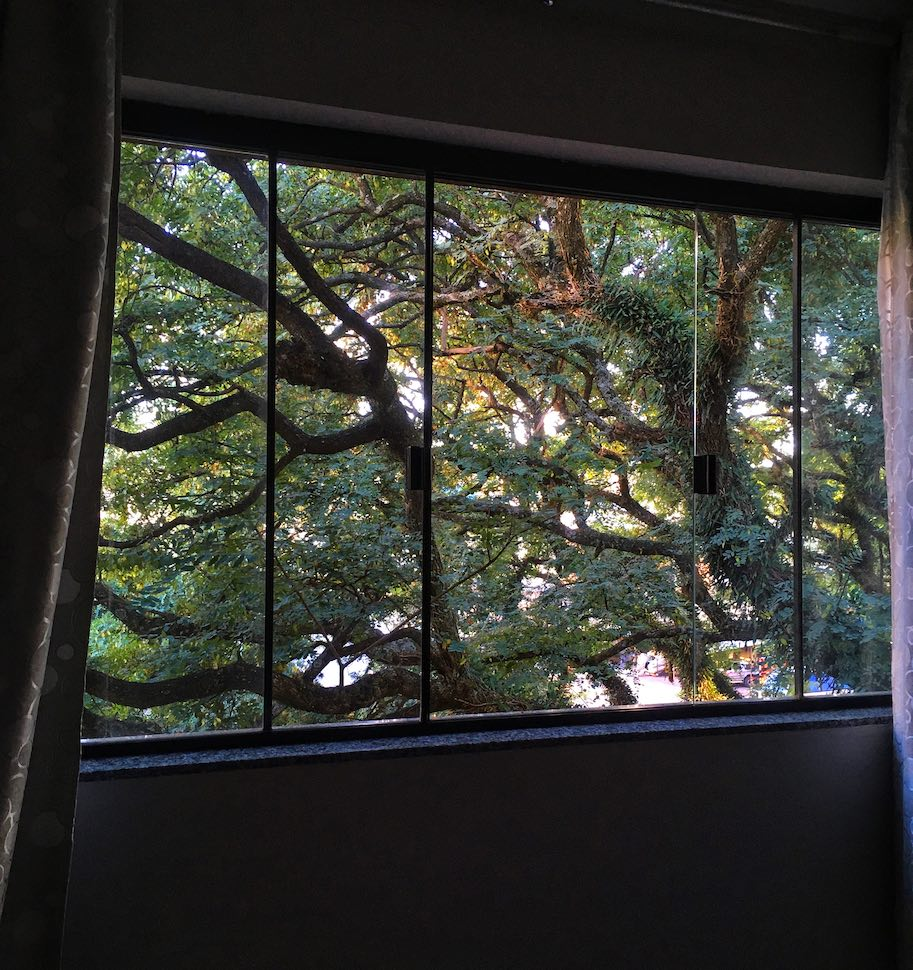 vista da janela quarentena corona