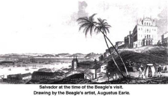 Salvador durante a visita de Darwin ao Brasil