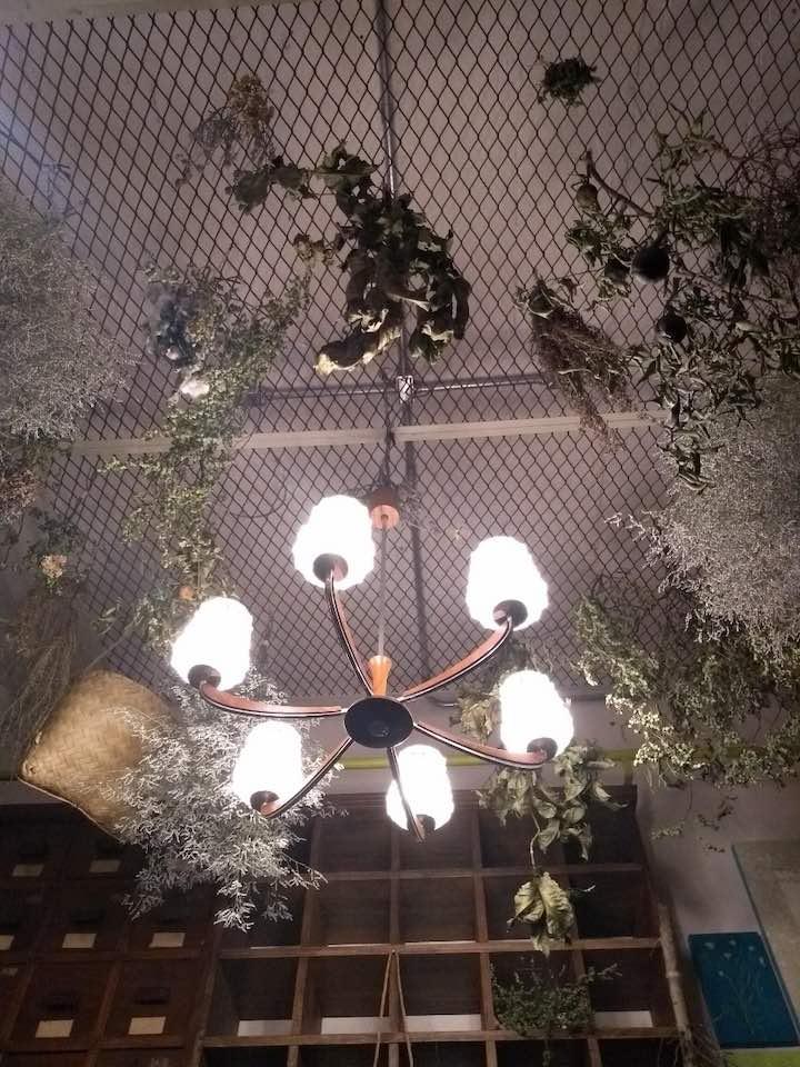 Mercado Novo - Herbário Ivy