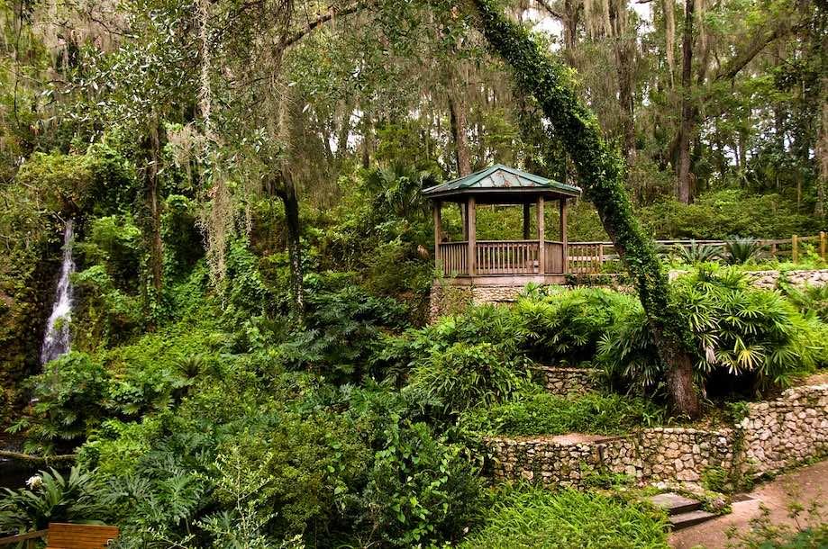 Parques Naturais da Flórida - Rainbow Springs