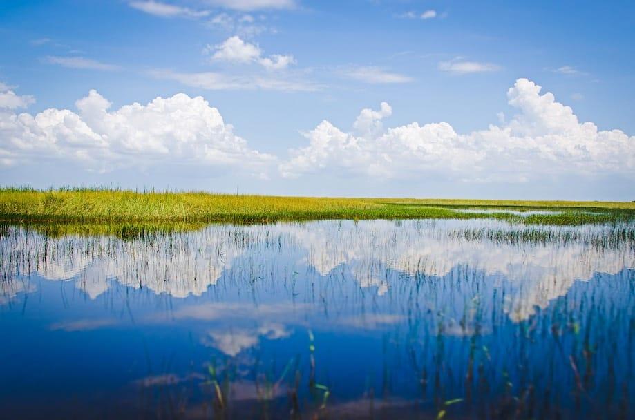 Parques Naturais da Flórida - Everglades National Park