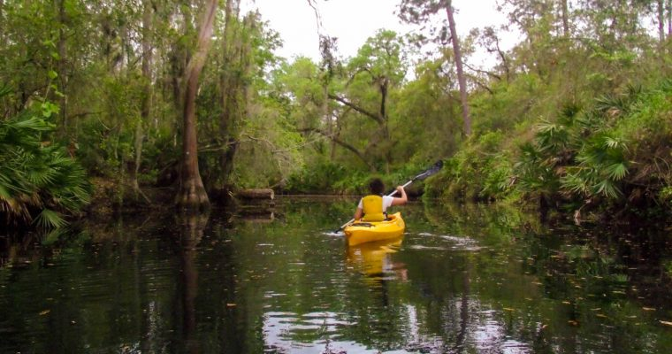 Kayaking Orlando